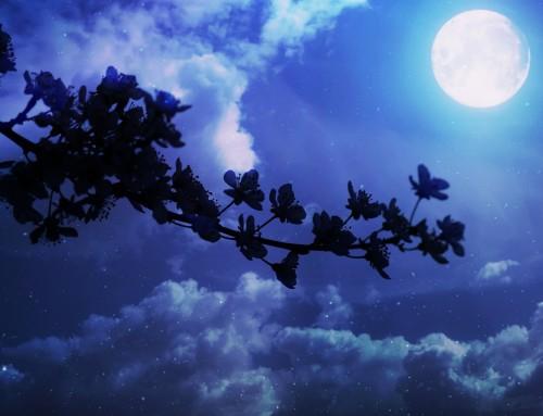 Luna llena en Libra y equinoccio de primavera
